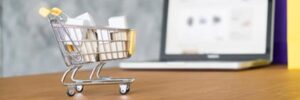 ecommerce bogotacarrito en web